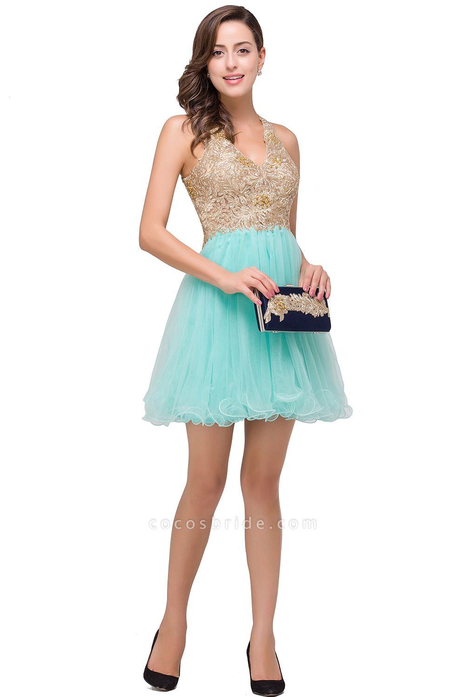 Short Tulle A-line V-Neck Appliques Sleeveless Prom Dresses