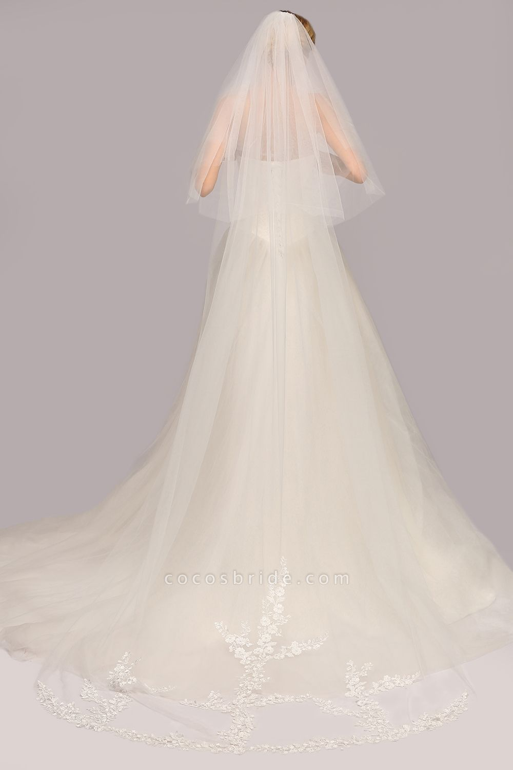 Excellent Lace Tulle Cathedral Wedding Veils