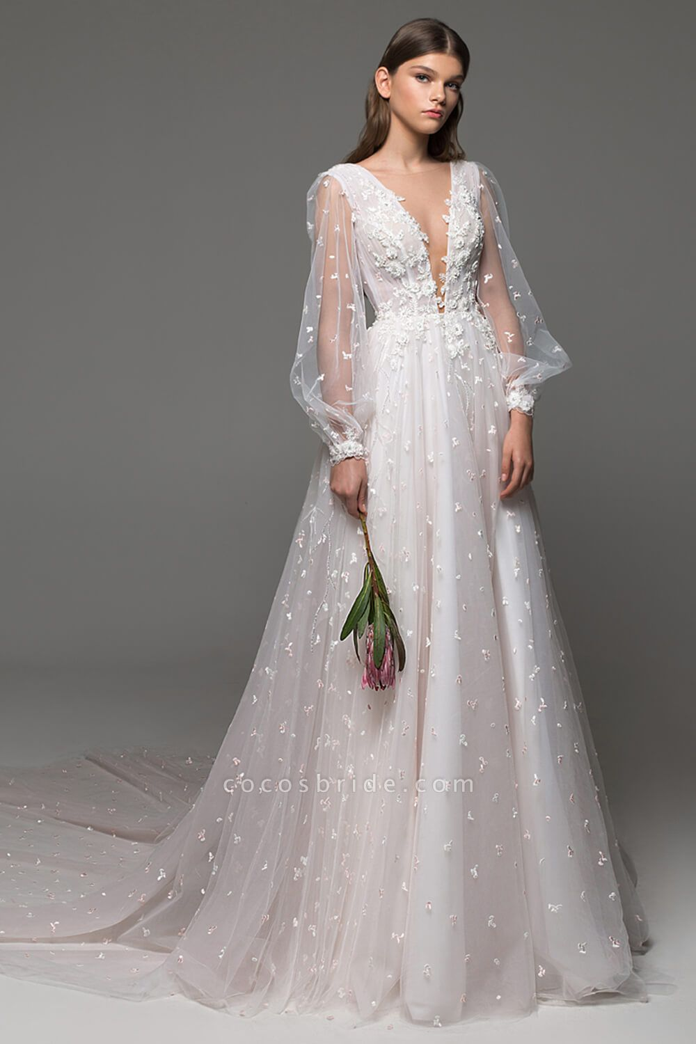 Long Sleeve Chapel Train Tulle A-line Wedding Dress