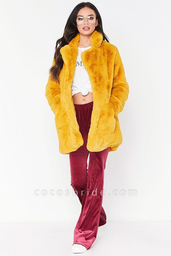 Winter Daily Regular Stand Long Faux Fur Coats