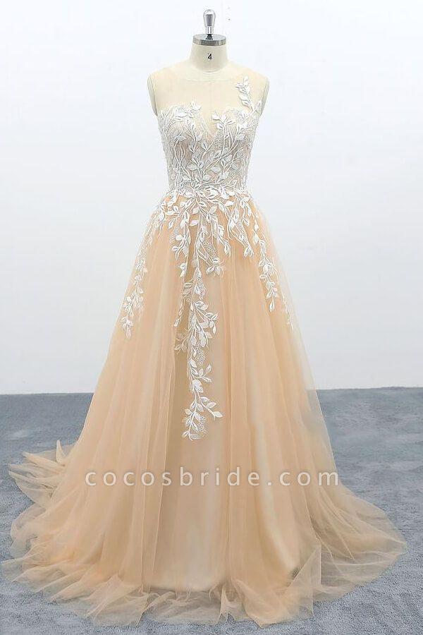 Graceful Appliques Tulle A-line Wedding Dress