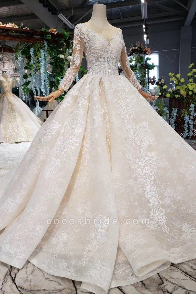 Princess Sleeves Sheer Neck Ball Gown Lace Long Wedding Dress