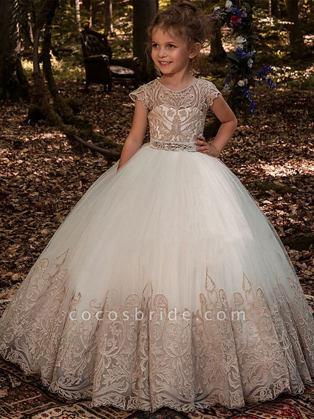 Ball Gown Sweep / Brush Train Wedding / Birthday / Pageant Flower Girl Dresses - Lace / Tulle / Cotton Short Sleeve Jewel Neck With Lace / Belt / Embroidery