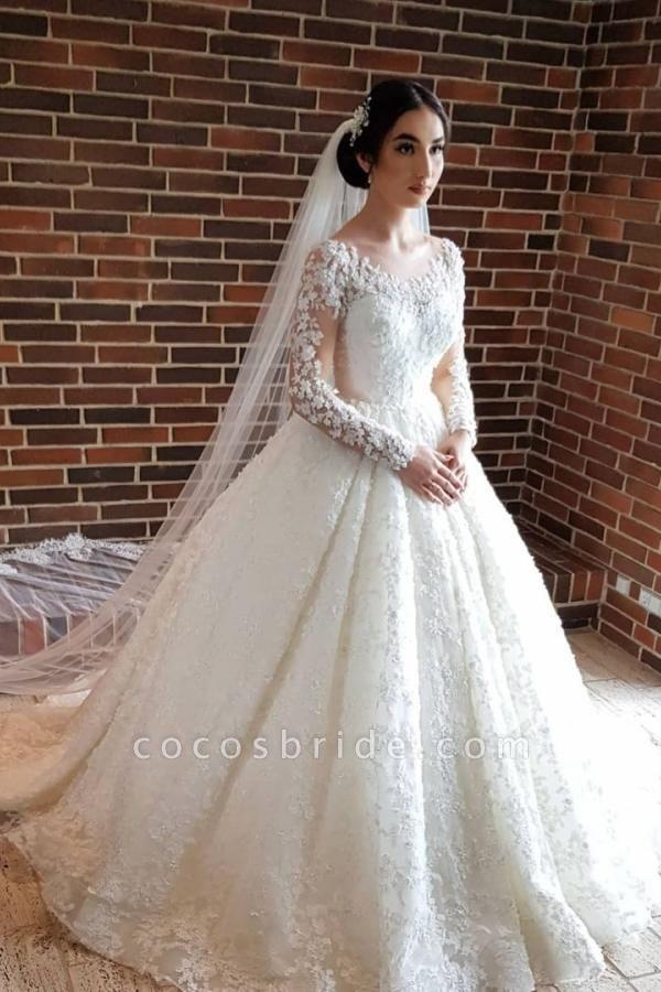 Elegant Princess Long Sleeves Lace Wedding Dresses