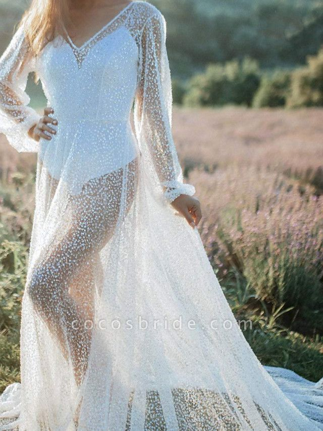 A-Line Wedding Dresses V Neck Sweep \ Brush Train Tulle Long Sleeve Beach Sexy See-Through Backless