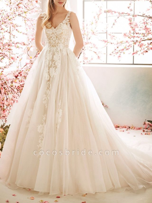 A-Line Wedding Dresses V Neck Sweep \ Brush Train Tulle Sleeveless Vintage Sexy Wedding Dress in Color See-Through Backless
