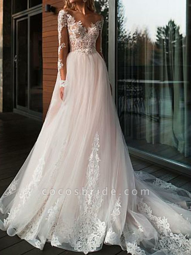A-Line V Neck Court Train Tulle Long Sleeve Romantic Boho See-Through Illusion Sleeve Wedding Dresses