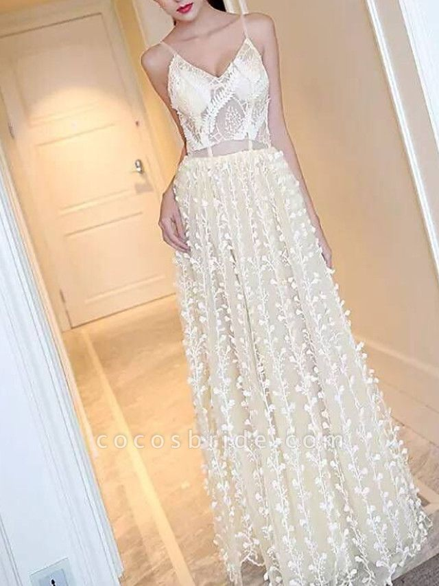 A-Line Wedding Dresses V Neck Sweep \ Brush Train Lace Tulle Spaghetti Strap Simple Casual Beach Plus Size