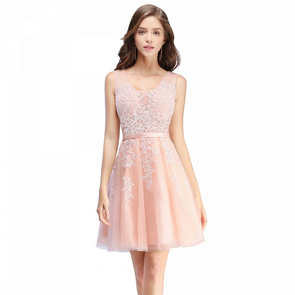 Glorious V-neck Tulle A-line Evening Dress_2