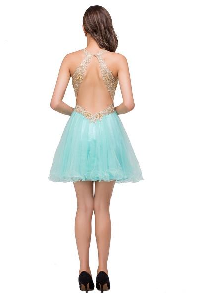 Short Tulle A-line V-Neck Appliques Sleeveless Prom Dresses_6