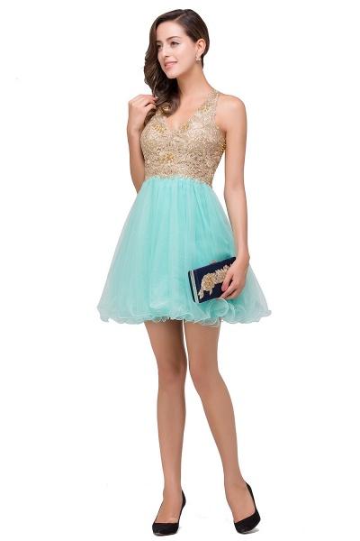 Short Tulle A-line V-Neck Appliques Sleeveless Prom Dresses_10