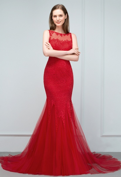 Chic Jewel Tulle Mermaid Evening Dress_5
