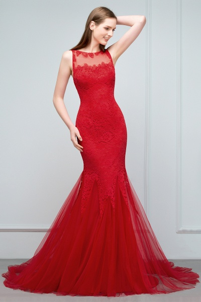 Chic Jewel Tulle Mermaid Evening Dress_11