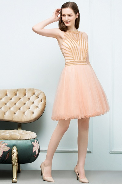 Exquisite Jewel Tulle A-line Homecoming Dress_7