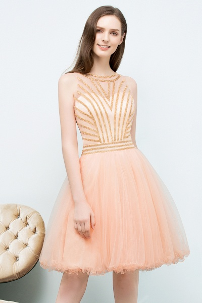 Exquisite Jewel Tulle A-line Homecoming Dress_8
