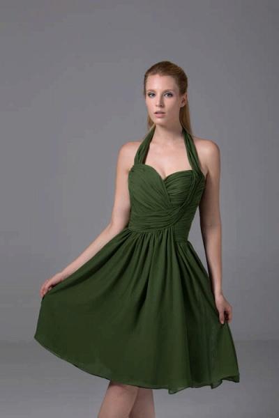 Best Halter Chiffon A-line Bridesmaid Dress_5