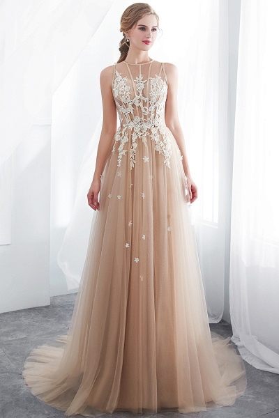 Aline Sleeveless Appliqued Tulle Floor Length Evening Dresses_7