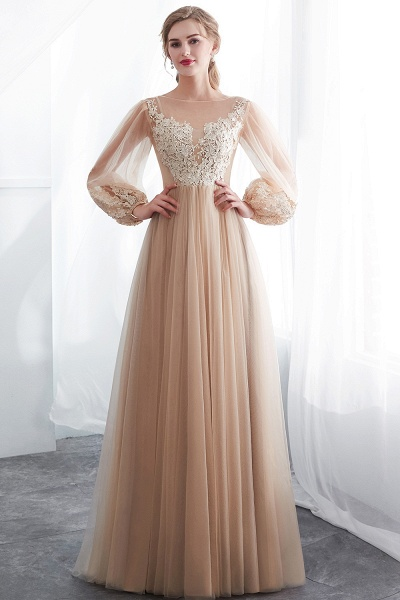 Champagne A-line Long Sleeves Appliques Tulle Evening Dresses_5