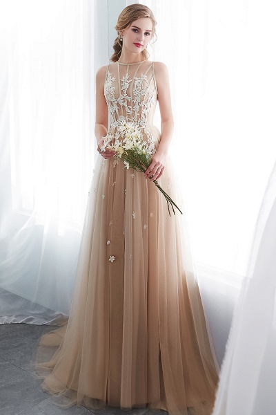 Aline Sleeveless Appliqued Tulle Floor Length Evening Dresses_4