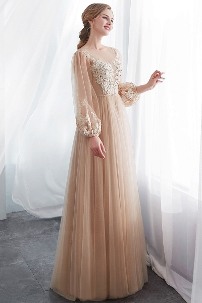 Champagne A-line Long Sleeves Appliques Tulle Evening Dresses_4