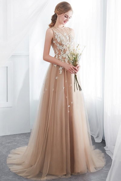 Aline Sleeveless Appliqued Tulle Floor Length Evening Dresses_8