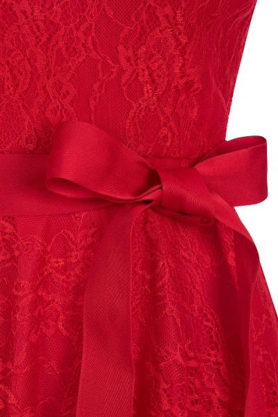 Short Sleeves V-neck Lace Dresses with Bow Sash_11