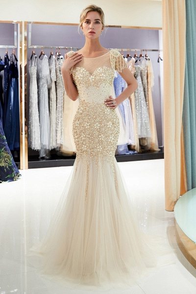 Fascinating Jewel Tulle Mermaid Prom Dress_14
