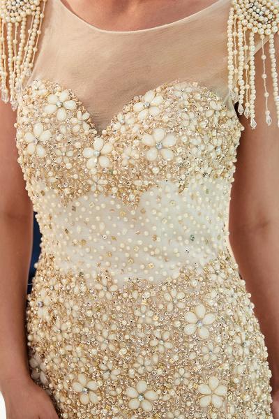 Fascinating Jewel Tulle Mermaid Prom Dress_16