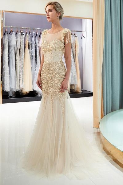 Fascinating Jewel Tulle Mermaid Prom Dress_12