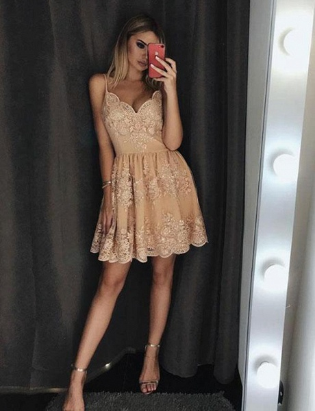 Elegant Lace A-Line Spaghetti Straps Appliques Mini Prom Dress_3