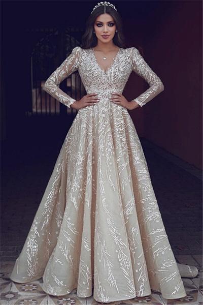 Elegant V-neck Appliques A-line Prom Dress_1