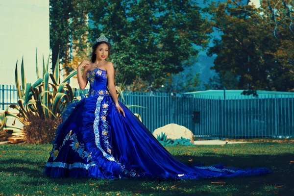 Fabulous Royal Blue Sweetheart Embroidery Ball Gown Quinceanera dresses_2