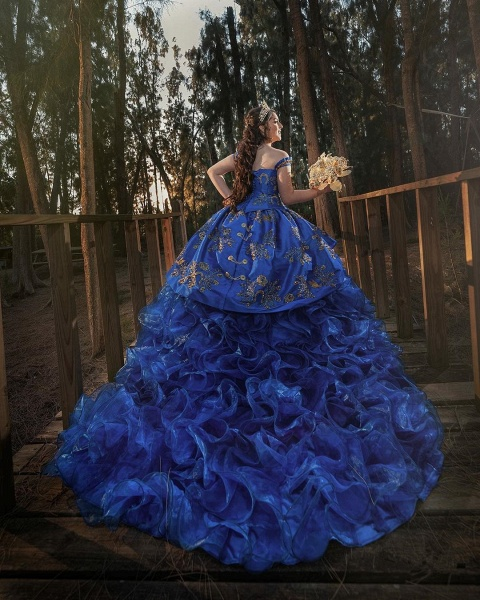Excellent Off-the-shoulder Tulle Ball Gown Quinceanera Dress_2