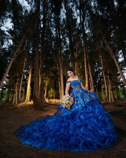 Excellent Off-the-shoulder Tulle Ball Gown Quinceanera Dress_3