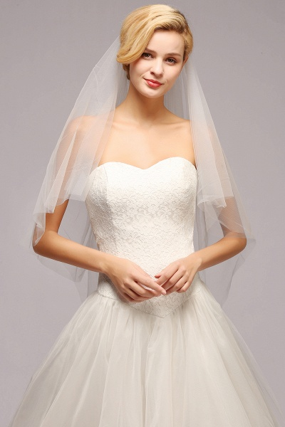 Excellent Lace Tulle Cathedral Wedding Veils_5