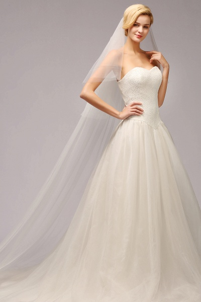 Excellent Lace Tulle Cathedral Wedding Veils_2