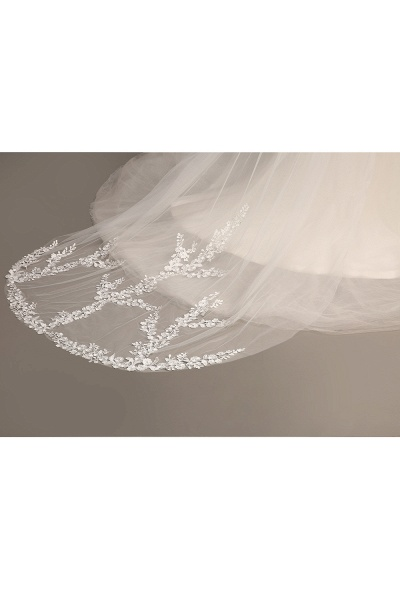 Excellent Lace Tulle Cathedral Wedding Veils_7