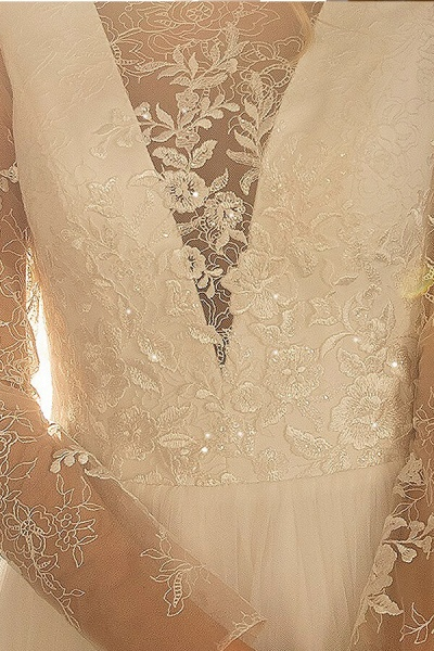 Awesome Long Sleeve Lace Tulle A-line Wedding Dress_6