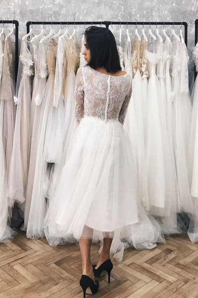 Chic Long Sleeve Lace Tulle A-line Wedding Dress_4