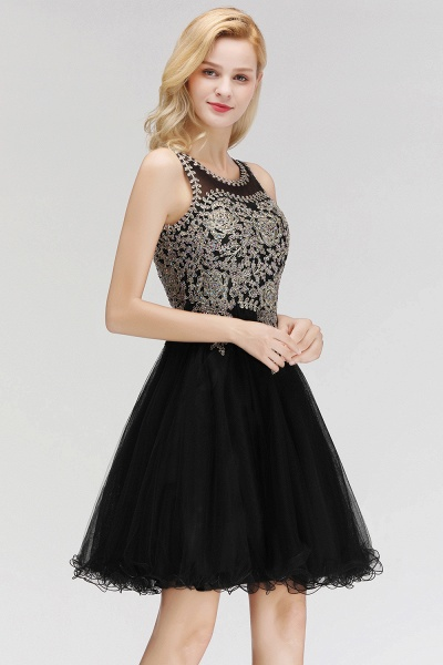 Fabulous Jewel Tulle A-line Evening Dress_9