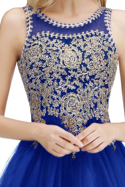 Fabulous Jewel Tulle A-line Evening Dress_18