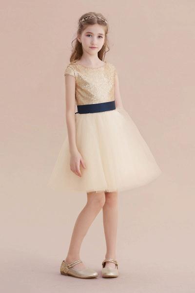 Sequins Tulle Cap Sleeve A-line Flower Girl Dress_5