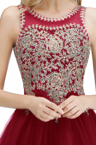 Fabulous Jewel Tulle A-line Evening Dress_34