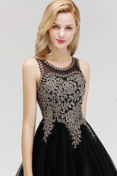 Fabulous Jewel Tulle A-line Evening Dress_11