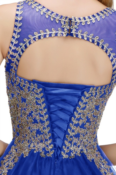 Fabulous Jewel Tulle A-line Evening Dress_13
