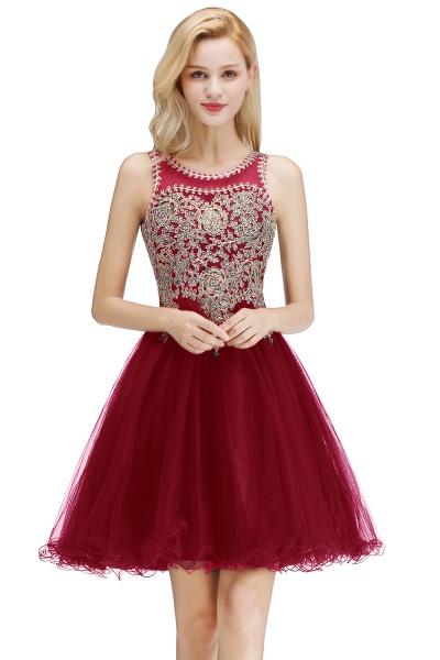 Fabulous Jewel Tulle A-line Evening Dress_1