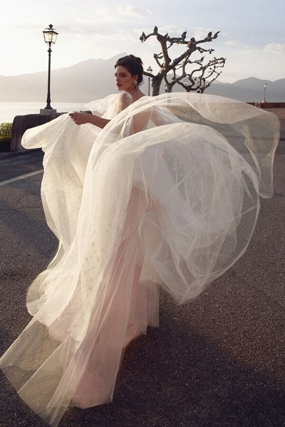 Chic Open Back V-neck Tulle A-line Wedding Dress_4
