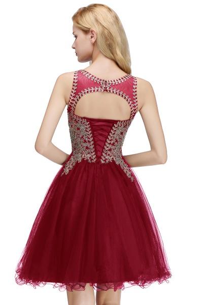 Fabulous Jewel Tulle A-line Evening Dress_22