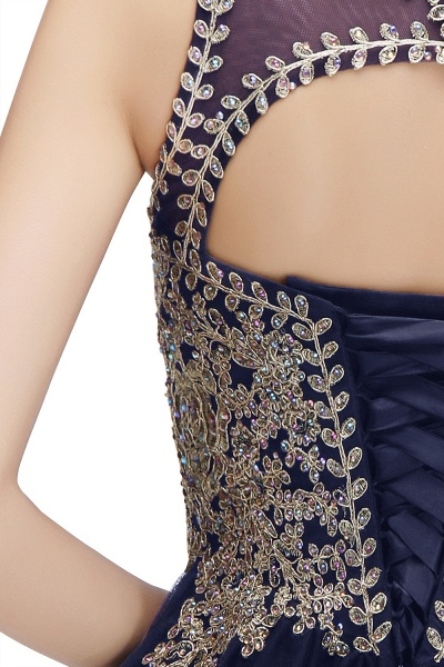 Fabulous Jewel Tulle A-line Evening Dress_19