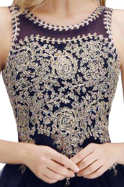 Fabulous Jewel Tulle A-line Evening Dress_26
